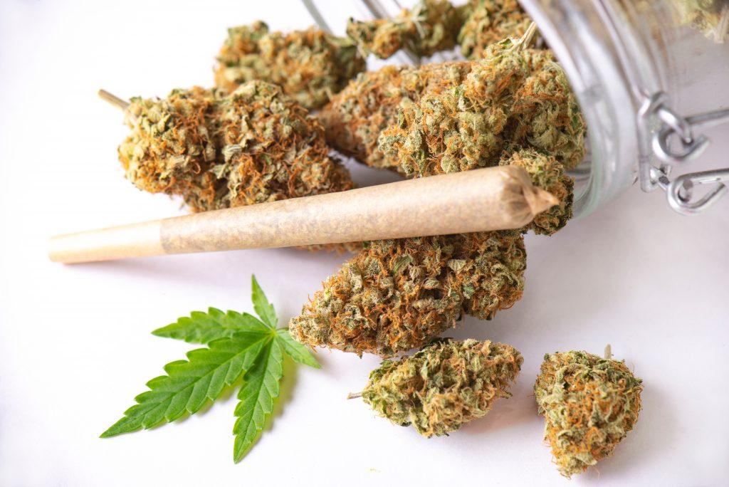 pre-roll cannabis